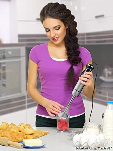 Mueller 1 Ultra-Stick 500 Watt 9-Speed Immersion Blender Heavy Brushed Stainless Finish Includes Whisk Silver