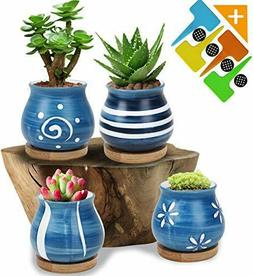 Succulent Plant Pots Succulent Planter with Bamboo Tray Set